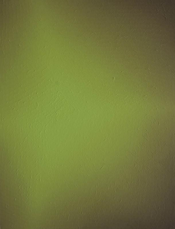 S/T, 2016, acrilico sobre lienzo, 80 x 60 cm.