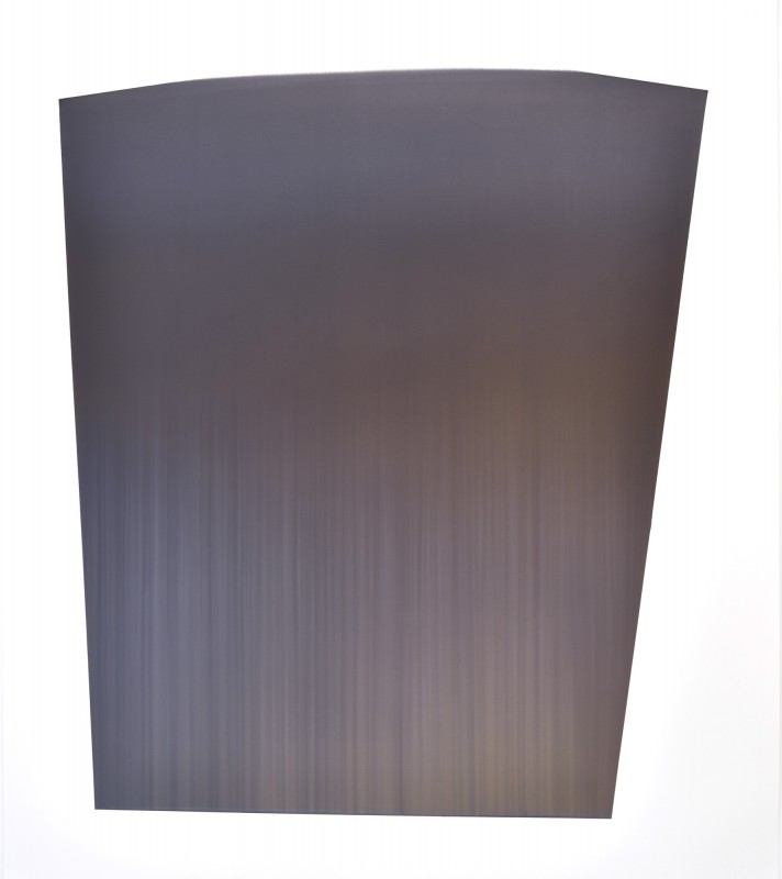 CCCXIII, 2016, tinta sobre papel, 153 x 133,5 cm.