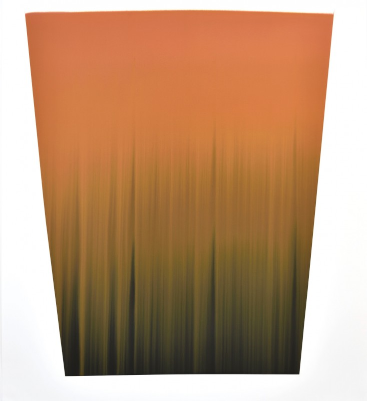 CCCXVIII, 2016, tinta sobre papel, 146 x 133,5 cm.