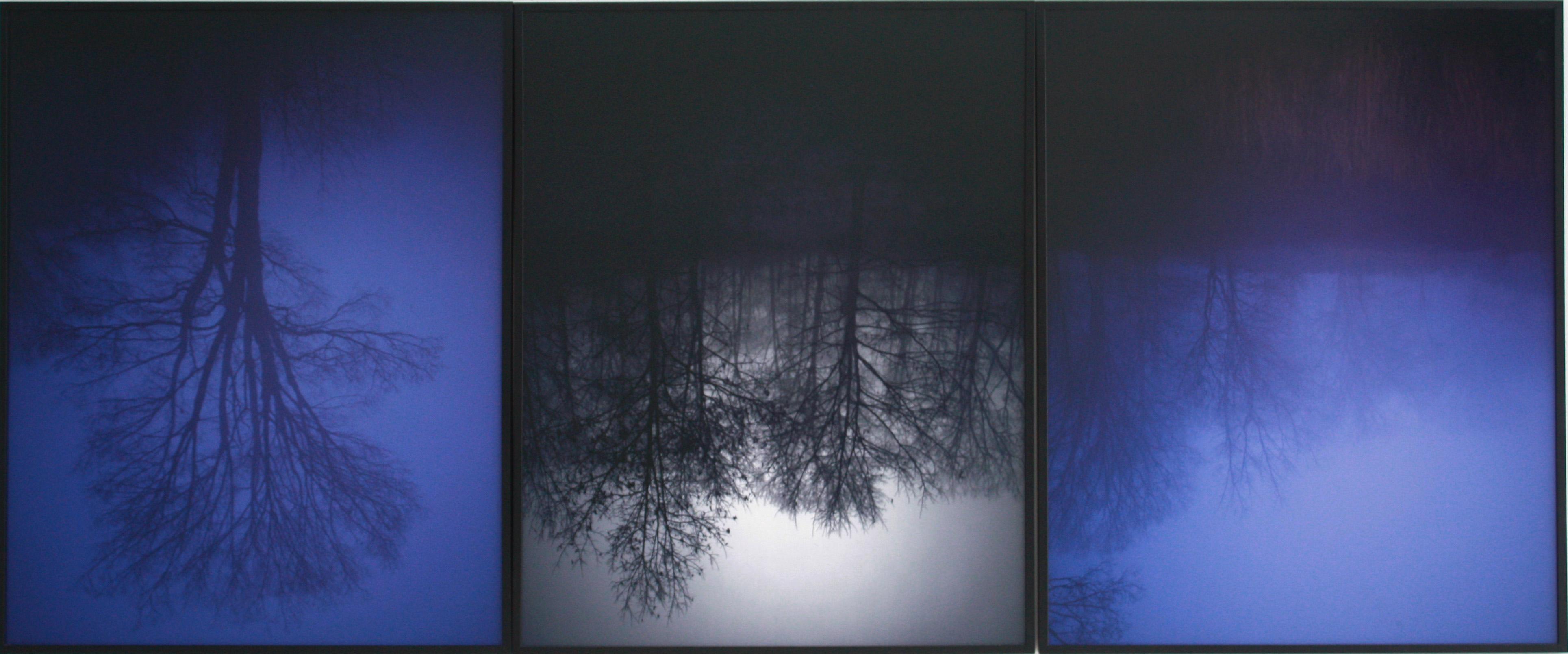 Blue Fog Triptychon, (ed.3), 2012, c-print, 75 x 60 cm. each
