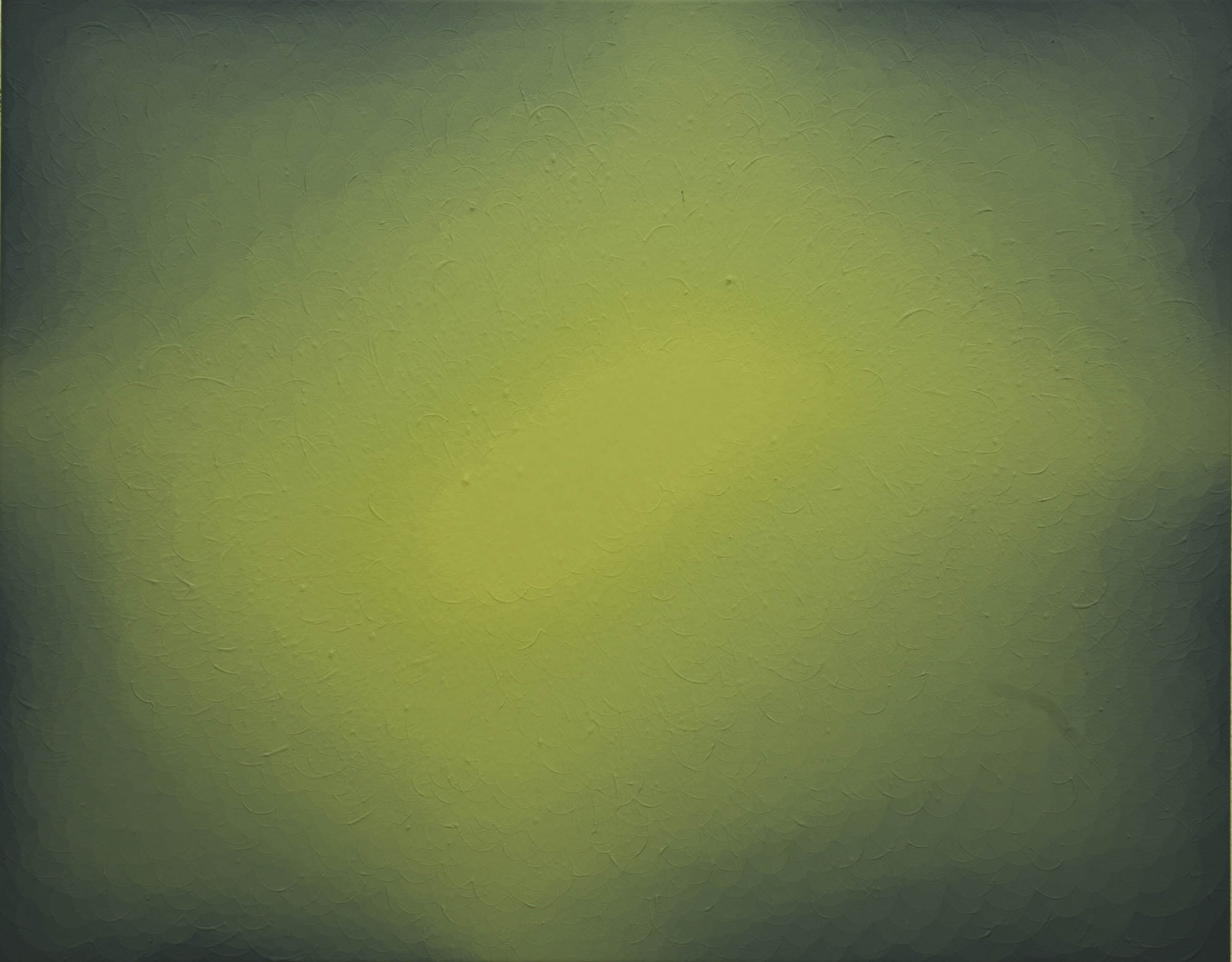 S/T, 2013, acrílico sobre lienzo, 75 x 95 cm.
