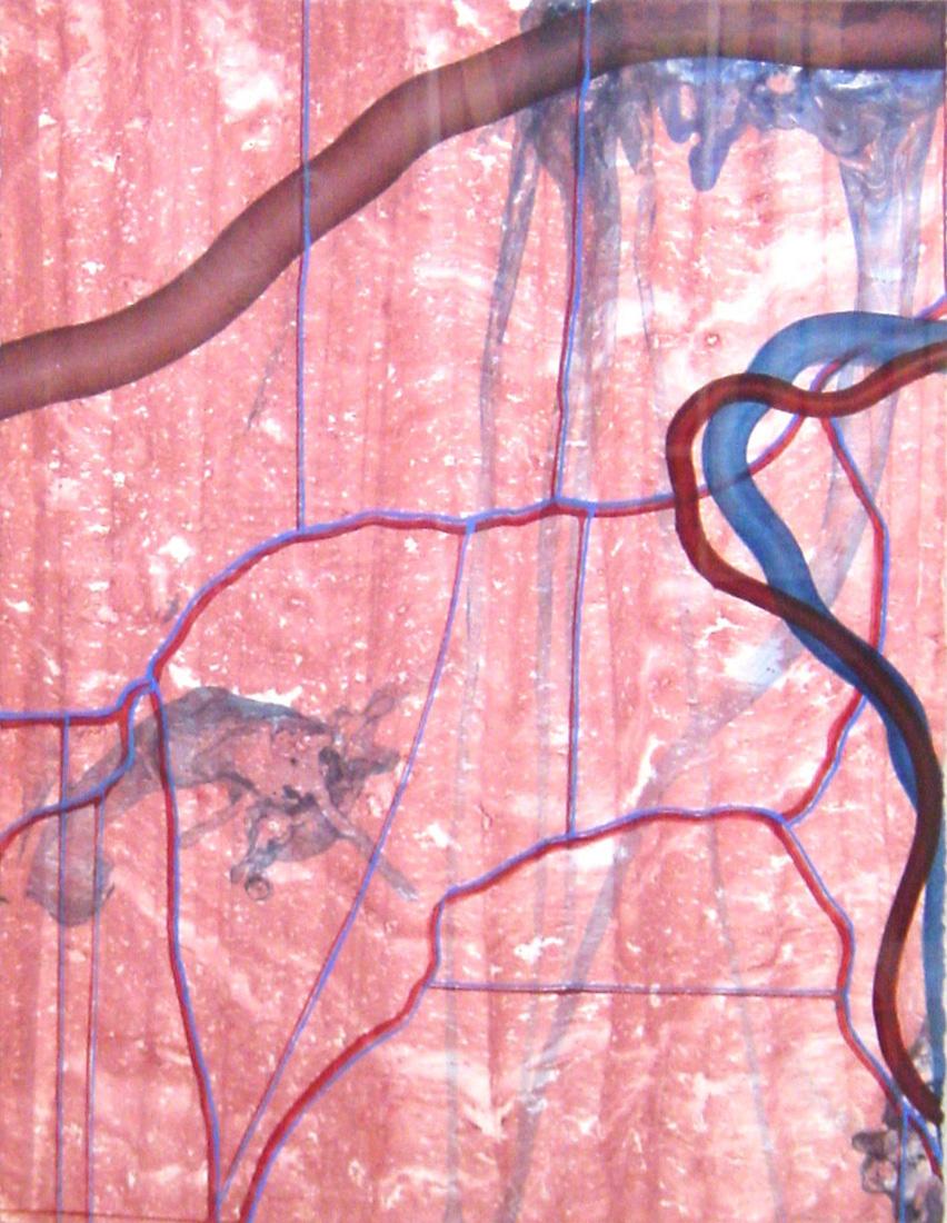 Serie 'Sistema Circulatorio s/t sc 7', 1996, técnica mixta sobre papel, 76 x 57 cm.