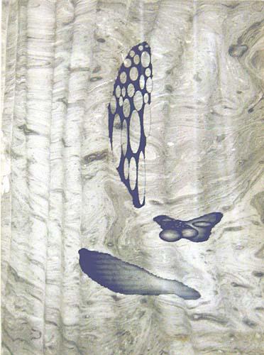 Serie 'Microworlds s/t sc 2', 1996, técnica mixta sobre papel, 30 x 21,5 cm.