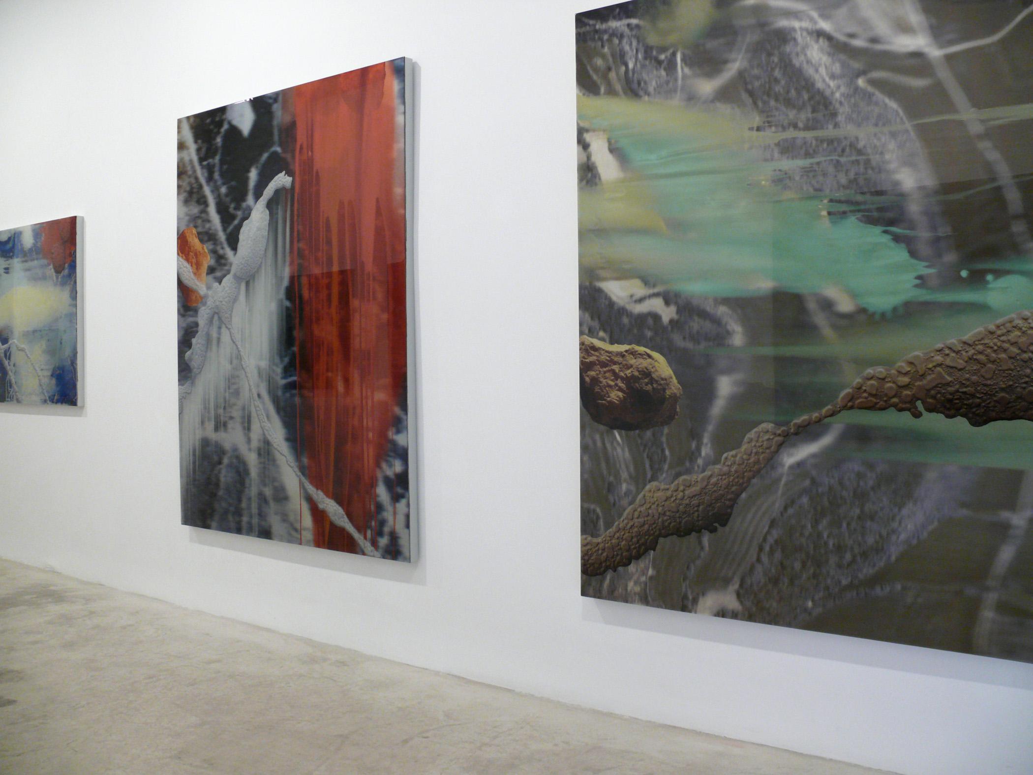 Vista de la exposición de Darío Urzay, 2007