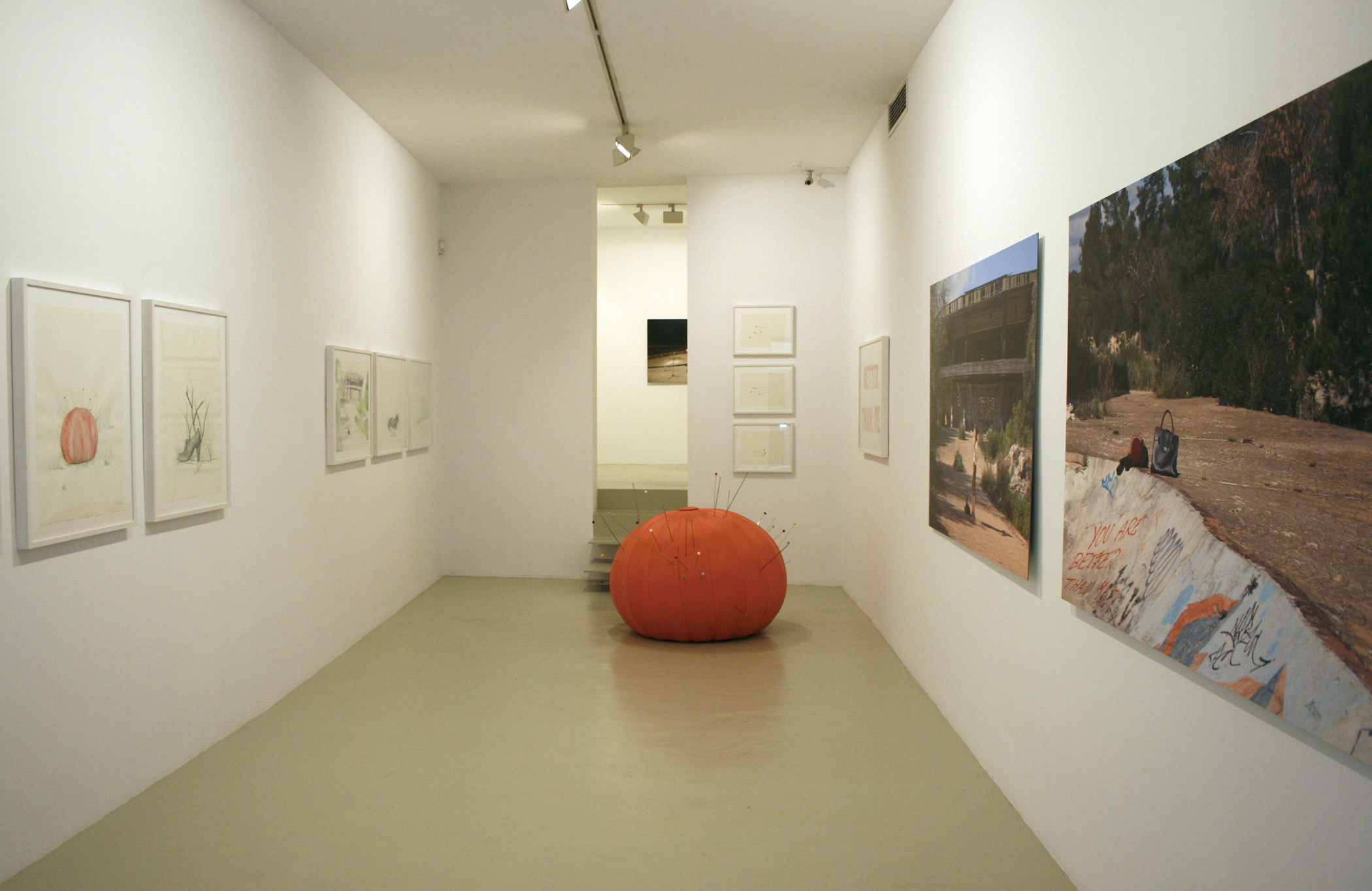 Exhibition view from Aina Perelló, 2008