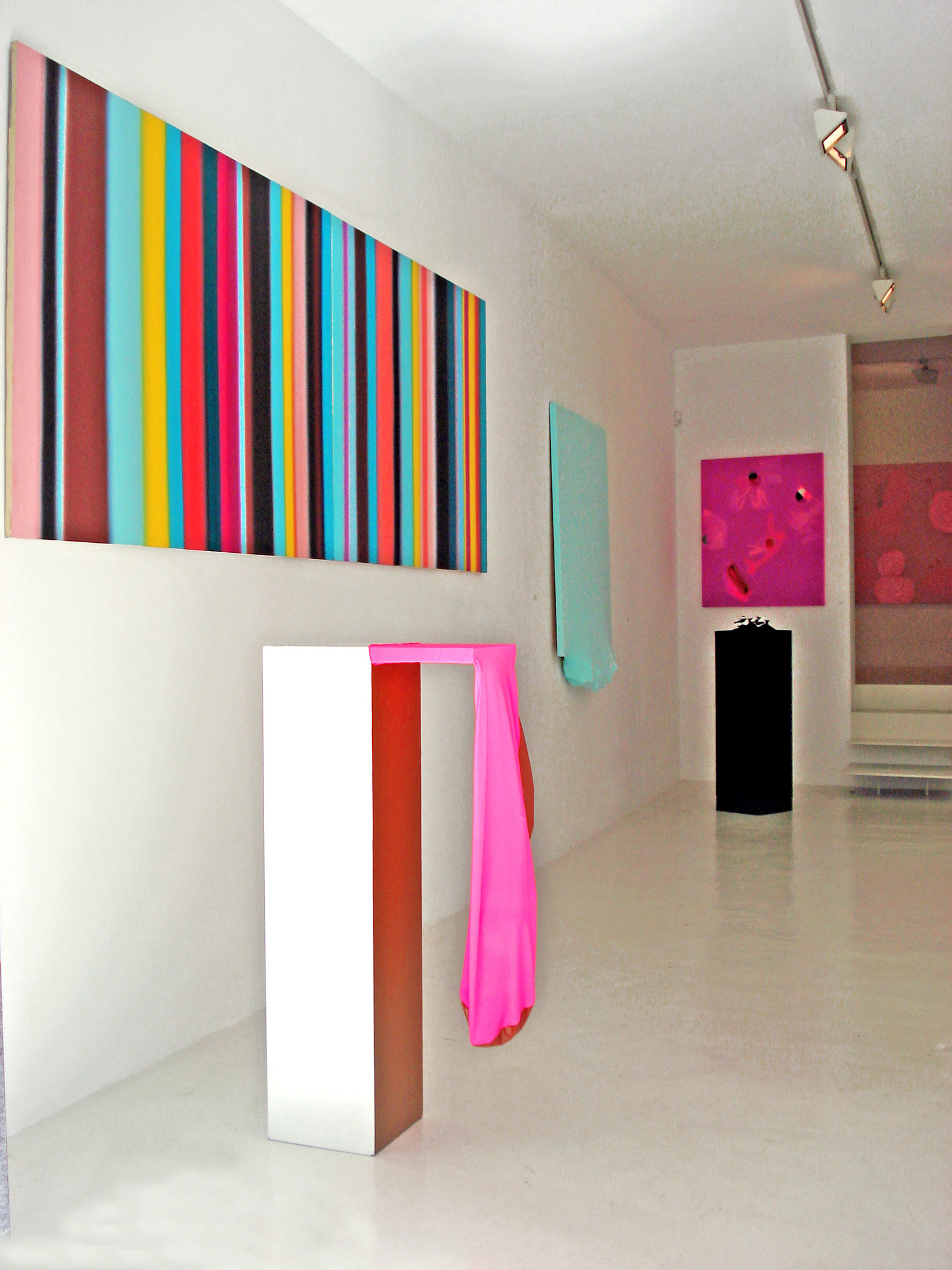 Exhibition view from Victoria Encinas, 2009