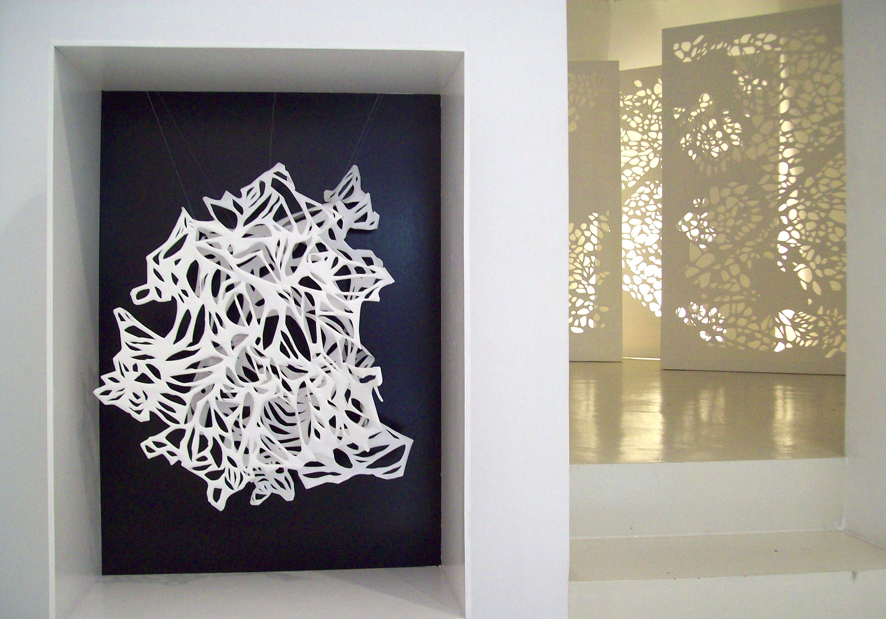 Vista de la exposición de Lucía Vallejo, 2010