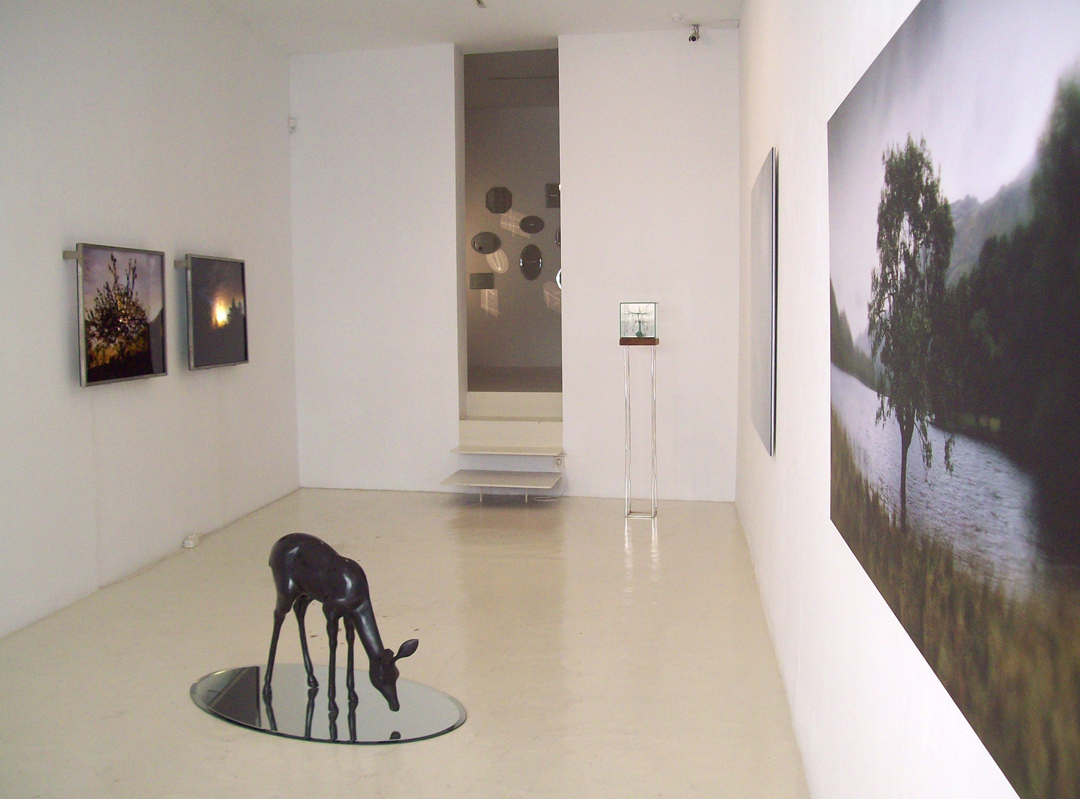 Exhibition view from Mayte Vieta, 2011